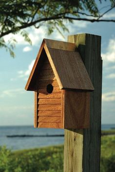 Heartwood's entry level, solid mahogany house is quite a way to take up housekeeping for birds. 100% solid mahogany with copper trim and cleanout door. Metal back hook for hanging and proper ventilati