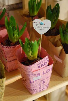 Flower pot gift favor | Growing gift favors | Pinterest | Favors ...