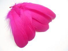 Selected Hot Pink Goose Nageoire FeathersCraft by FeatherTreasure