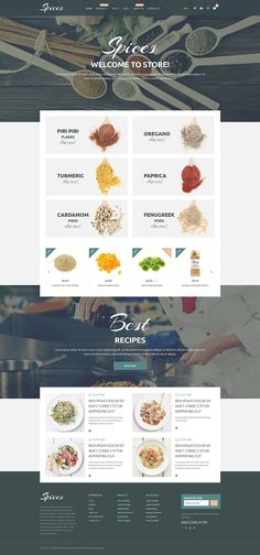 19 Best Shopify Themes images in 2017 | Website template, Ecommerce