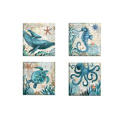 Portfolio Canvas Decor 'Monterey Bay Octopus' by Geoff Allen Gallery Wrapped Canvas (Set of 4)