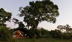Safari Tent, Governors Camp, Masai Mara, Kenya