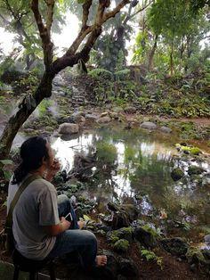 Taman tropis hutan hujan