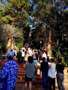 Wat Phra That Doi Suthep de Chiang Mai Road Trip Thailande
