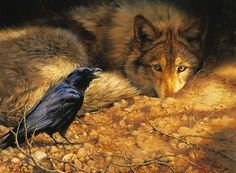 Wolf listens to raven...