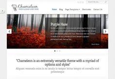 http://www.themesfinder.com/demo/ET38/Chameleon-WordPress-Theme/demo ThemesFinder