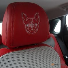 Car Photos, Seat Covers, Car Seats, Hats, Collection, Hat, Hipster Hat