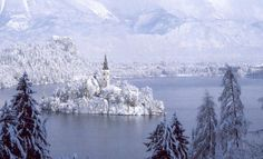 Lake Winter Lake Bled Slovenia Picture on VisualizeUs - Bookmark pictures and videos that inspire you. Description from pinterest.com. I searched for this on bing.com/images