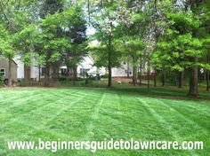 Lawn Stripes  #beginnersguidetolawncare #lawn #lawns #lawncare #lawnmower #mower #mowing #lawnmaintenance #lawncaremaintenance #commerciallawn #commerciallawnmaintenance #lawnbusiness #landscaping #landscape #lawncarebusiness #business #businessstartup #businessclass #businessowner #businesscoach #landscapedesign #landscapes #landscapelover #landscapecaptures #landscapelovers #lawnbusiness #lawnbusinessstartup #startalawnbusiness