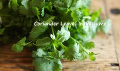"""When referring to the actual leaves of the coriander plant the word """"Cilantro"""" instead of """"Coriander Leaf"""" is usually used. Cilantro is actually used very rarely in mainstream perfumery and is therefore seldomly used. Coriander is popular as a scented stimulating substance and also an important culinary spice... Please read more on https://www.facebook.com/cplaromas/photos/a.204401446257641.60067.204150379616081/945239305507181/?type=1&theater"""