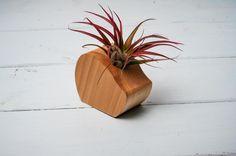 Round Cut Off Air Plant Vase