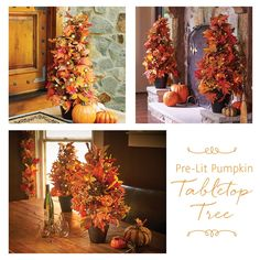 2-ft Pre-Lit Pumpkin Tree: This beautiful fall decoration can be placed on a table during your Thanksgiving dinner, next to your fireplace along with other fall décor or on your front porch to greet your guests as they arrive.