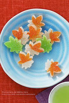 Japanese Sweet Autumn