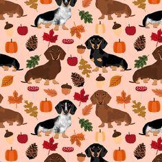 Fall Wallpaper Dog Weenie 291 Best Dachshund Fabric Images Dachshund Dog Weenie