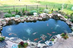Koi ponds koi and ponds on pinterest for Koi fish pool table