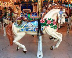 Carousel horse - Washington County Fair, Fayetteville, Arkansas by Dan Davis
