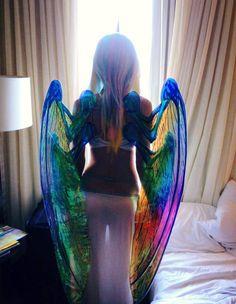 Rainbow | Arc-en-ciel | Arcobaleno | レインボー | Regenbogen | Радуга | Colours | Texture | Style | Form | Wings