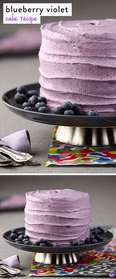 Blueberry Cake Dried blueberries Freeze drying and Sweet cakes