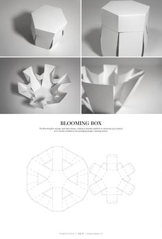 Blooming Box – structural packaging design dielines