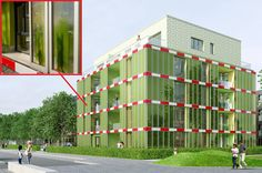 Edifício utiliza algas para gerar eletricidade