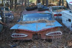 Abandoned car, 1959 Chevy