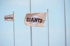 The wind is a factor as the San Francisco Giants play the St. Louis Cardinals in Game 3 of the National League baseball championship series at AT&T Park in San Francisco, Calif., on Tuesday, Oct. 14, 2014. (Dan Honda/Bay Area News Group)