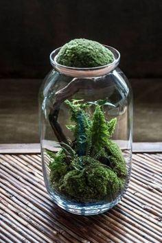 Awesome Bonsai Terrarium On The Jars 67