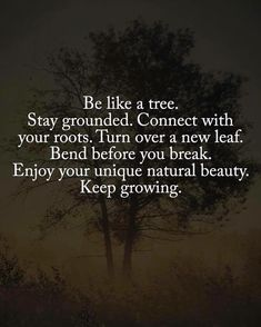 Quotes nature beauty inspiration wisdom 21 New ideas Quotes Dream, Quotes To Live By, Me Quotes, Beauty Quotes, Quotes On Trees, Quotes About Trees, Tree Of Life Quotes, Quote Meme, Career Quotes