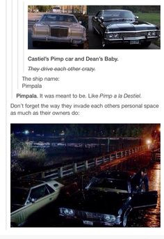 Pimpala. I'm dying. ||| So done with this fandom.