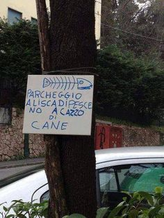 Italian Life, Simile, Word Pictures, Funny Signs, Lol, Trieste, Comic, Street, Google