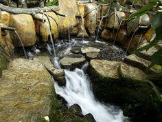 Amazing HD Nature Wallpaper