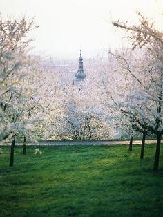 Prague ... ☮