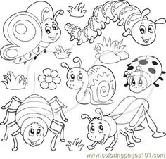 Butterfly-Caterpillar-Spider-Snail-Ladybug-And-Grasshopper-Royalty-