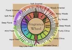 Our material correspond to the personality types. This fragrance wheel shows some of the essential oils we stock up with reference to the perfume personality types