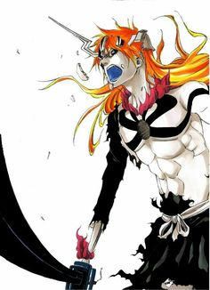 Ichigo Vasto Lorde || Bleach