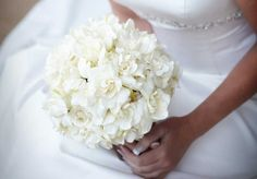 Gardenia - 15 Flowers in Season in December for Wedding - EverAfterGuide
