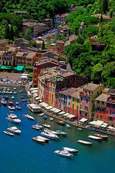 Portofino, Italy - one of the most beautiful places I've ever been.