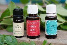 Aromaterapia – jak wybrać olejek aromatyczny dla siebie? | Klaudyna Hebda