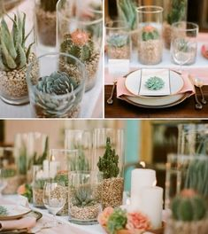 Other tables will have a cluster of cylinder vases in varying heights filled with soil and white rocks topped with assorted succulents and surrounded by vintage clay pots with assorted succulents and gold mercury glass LED votives.