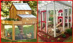 I think having backyard chickens and a coop is a great idea for anyone with a small yard. We live in a pretty standard sized sub division and everyone has a fenced in back yard. I think it would be pretty easy to fortify our fence so that chickens. Chicken Coop Plans Free, Chicken Coop Decor, Easy Chicken Coop, Chicken Coop Designs, Backyard Chicken Coops, Chickens Backyard, Backyard Farming, Small Space Gardening, Diy Furniture Plans