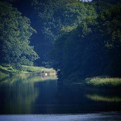 Sommer over Søholm Sø #visitfyn #fyn #nature #nature_perfection #naturelovers #mothernature #natur #denmark #danmark #dänemark #landscape #assensnatur #assens #mitassens #vildmedfyn #fynerfin #vielskernaturen #visitassens #instapic #picoftheday #summer2016 #sommer #igscandinavia #lake