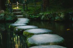 Company Alignment: The Salesforce Secret to Success Jack Kornfield, Great Meaning, Yoga, Learn To Read, Live For Yourself, Stepping Stones, Jesus Christ, Find Image, We Heart It