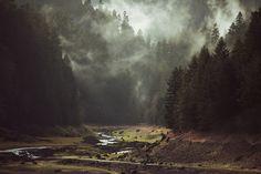 Kevin Russ et la nature sauvage
