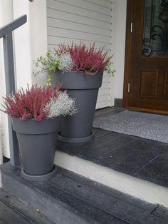 Syksyä Garden Front Of House, Side Garden, Garden Pots, Home And Garden, Balcony Flowers, Flower Planters, Outdoor Planters, Outdoor Gardens, Front Door Plants