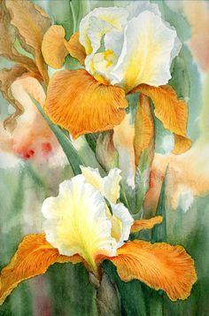 Fall Fiesta Irises by Louise Wilson