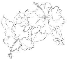 Контурные рисунки цветов