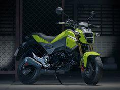 2017 Honda Grom 125 Motorcycle News at Honda Grom For Sale, Honda Grom 125, Honda S, 125 Motorcycle, Motorcycle Style, Honda Motors, Honda Motorcycles, Brake Calipers, Sport Bikes