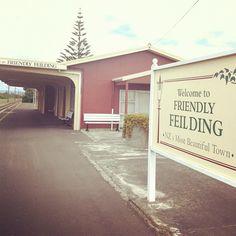 Seasonal Flowers, Kiwi, New Zealand, Trains, Beautiful Places, Management, Outdoor Decor, Instagram, Home