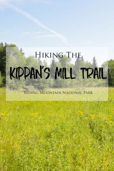 Hiking the Kippan's Mill Trail in Manitoba's Riding Mountain National Park – Brittany's Adventures Riding Mountain National Park, Mountain Park, Travel Articles, Travel Advice, Travel Tips, Hiking Tips, Camping And Hiking, Hiking Photography, Trail Guide