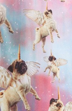 Imagen de unicorn, pug, and wallpaper